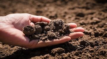 Desinfección y limpieza saludable de suelos