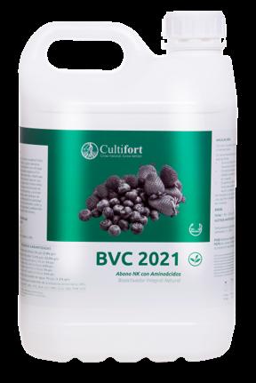 BVC 2021