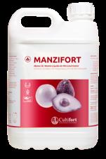 Manzifort