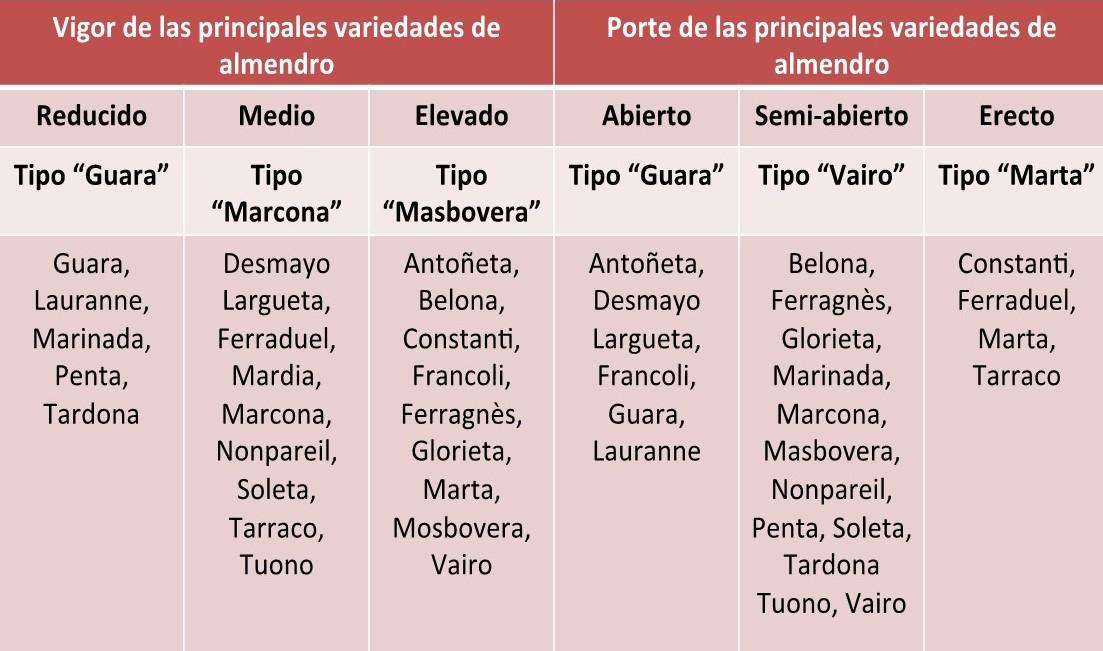 principales variedades de almendro