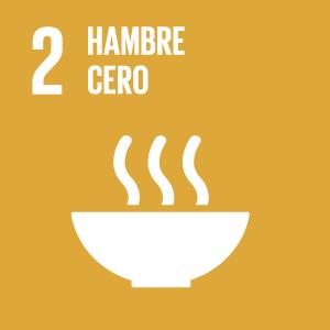 Objetivo Desarrollo Sostenible 2 - Hambre cero