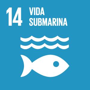 Objetivo Desarrollo Sostenible 14 Vida Submarina