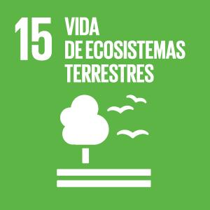 15_ODS_vida de ecosistemas terrestres