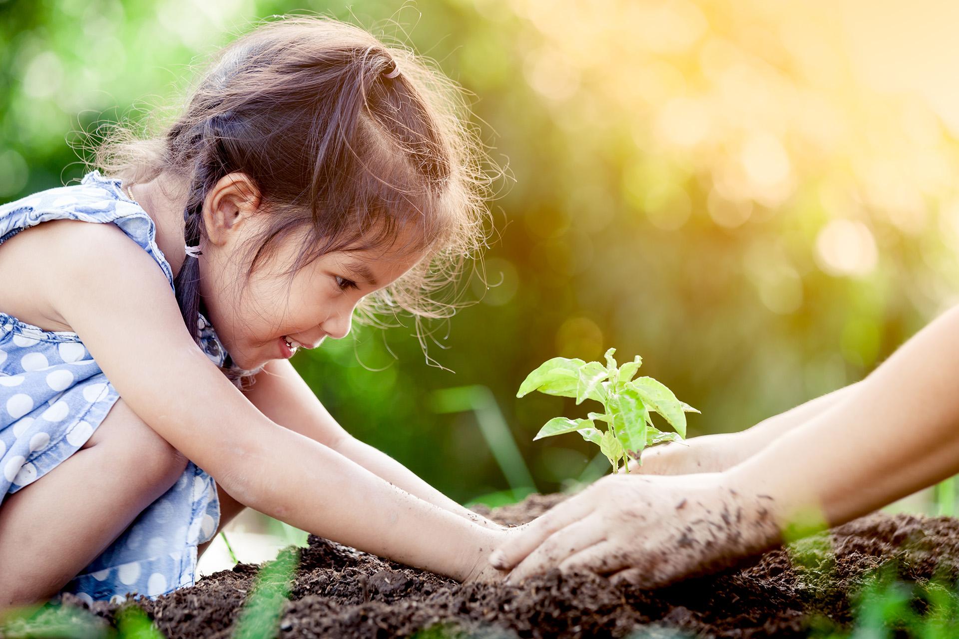 Objetivo Desarrollo Sostenible 15 Vida de ecosistemas terrestres
