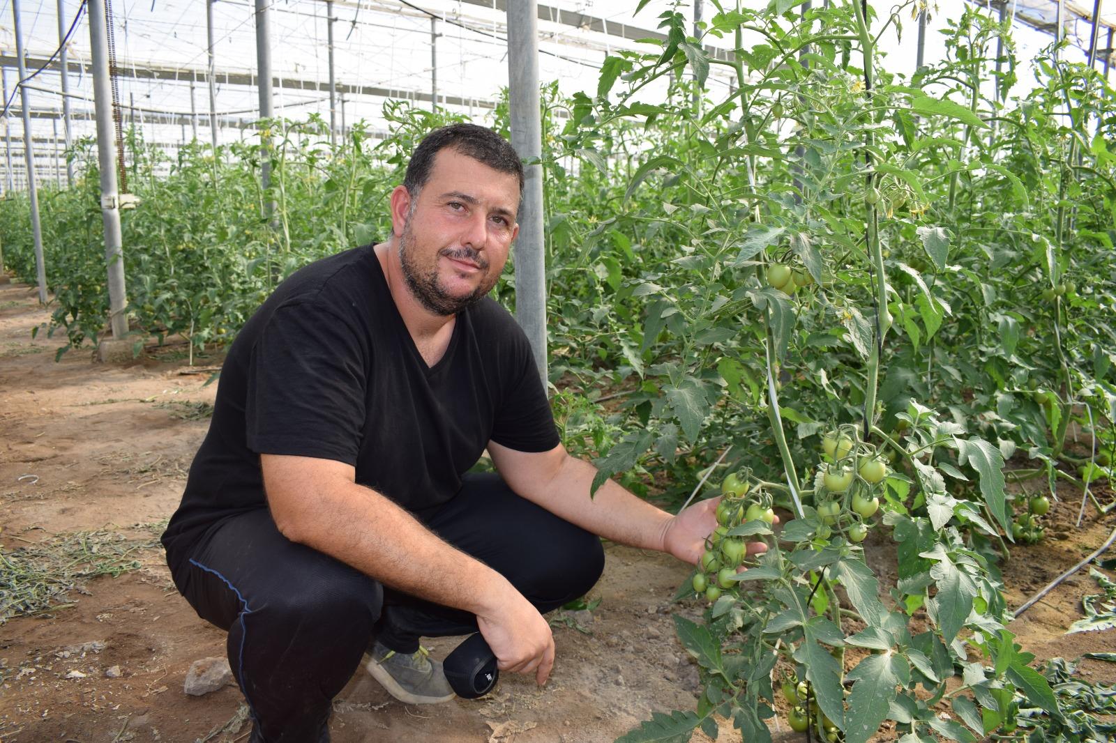 Productos Cultifort para una agricultura ecológica están ofreciendo una respuesta óptima.