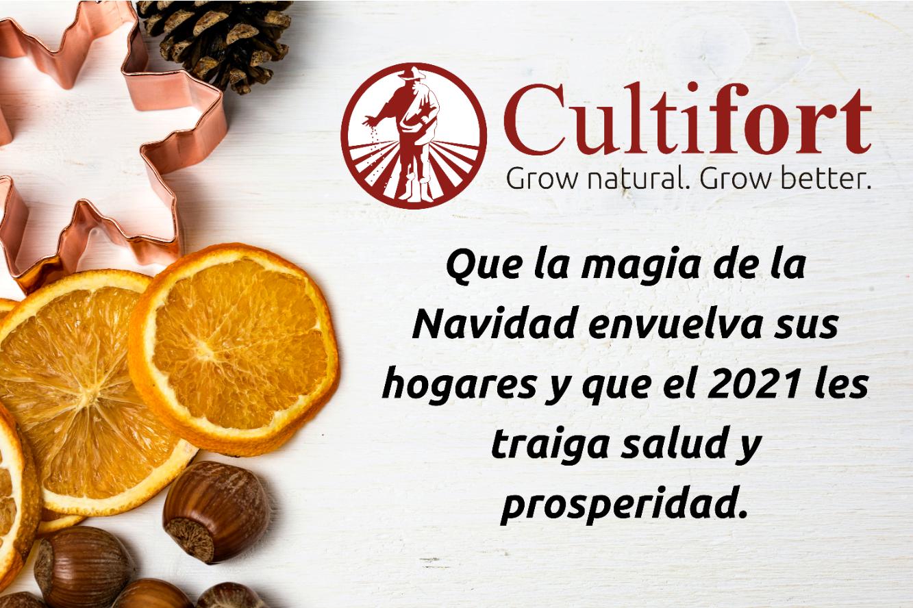Feliz Navidad 2021 - Cultifort - Español